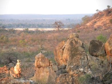 mapungubwe-kaoxa-10