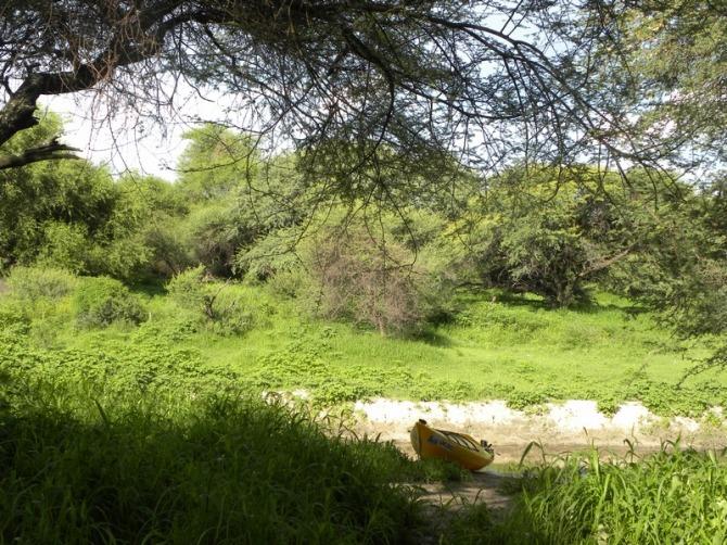 Kayak Kalahari Ngami (24 small)