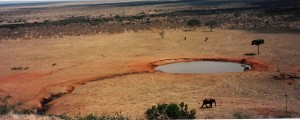 KenyaTsavo (12)