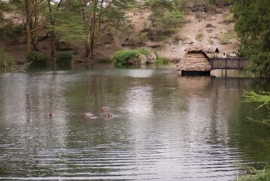 Mzima View Tank 2