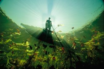 Okavango swim by David Doubilet