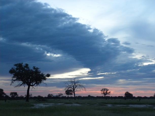 HwangeSomalisa2010 (70)