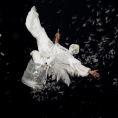 angel feathrs 4