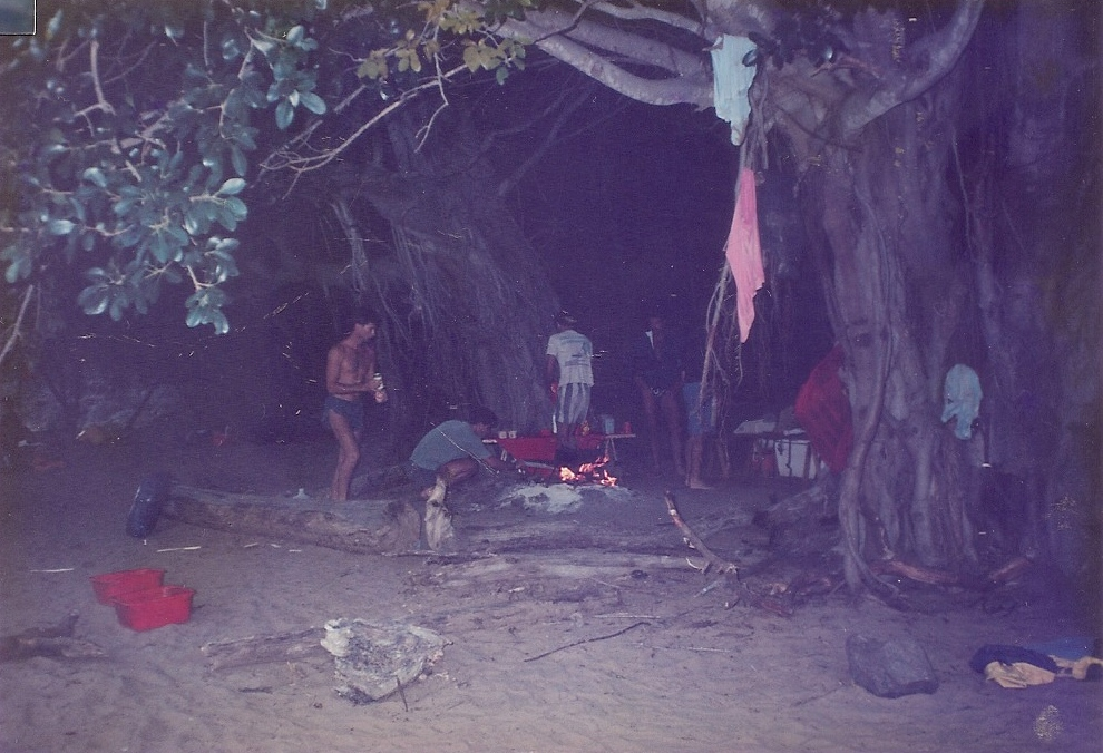 Tugela Fig Tree Camp