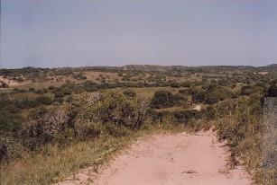 ndumo-kosi-mabibi-isuzu-13