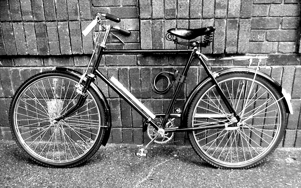 Bicycle Dikwiel deluxe
