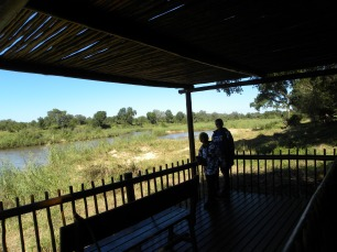 That's the Kruger Park across the river. - - - Jess spotted ele, buff, waterbuck & hippo