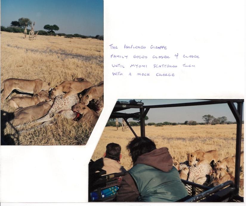Botswana Oddballs Savuti (7)