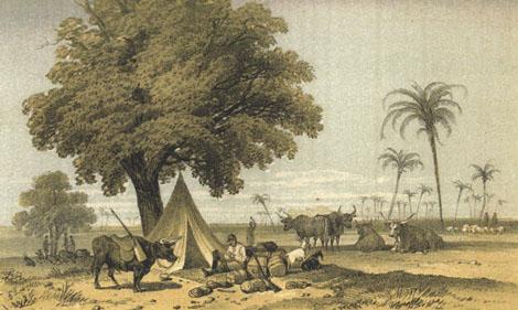 Galton camp SWA