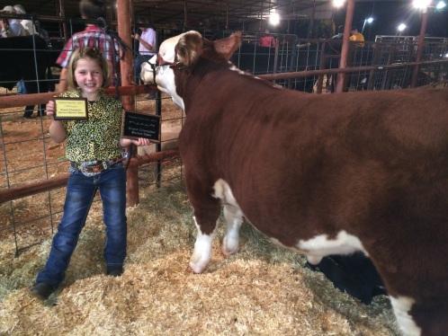 Livestock fairs