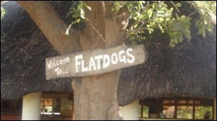 Flatdogs on the South Luangwa park eastern boundary - right on the banks of the Luangwa river.