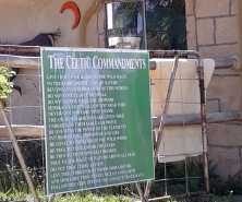 The 16 Commandments