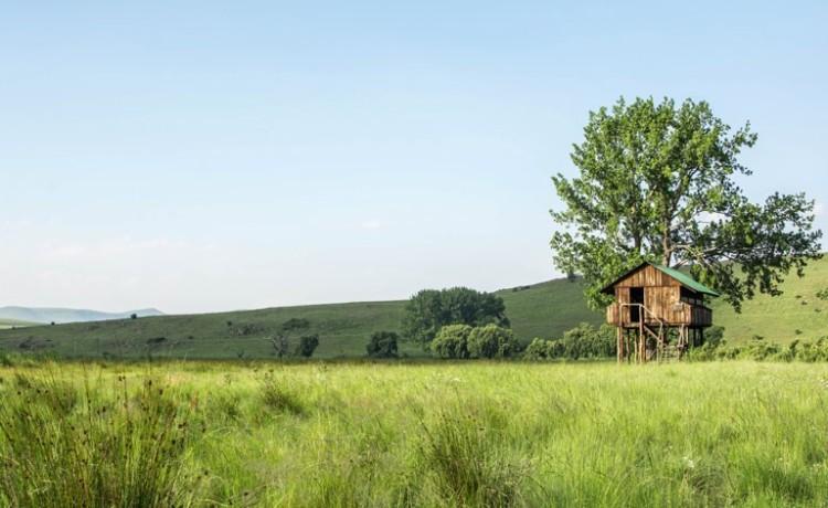 Wetland-Reserve-Melanie-van-Zyl-Wakkerstroom-6