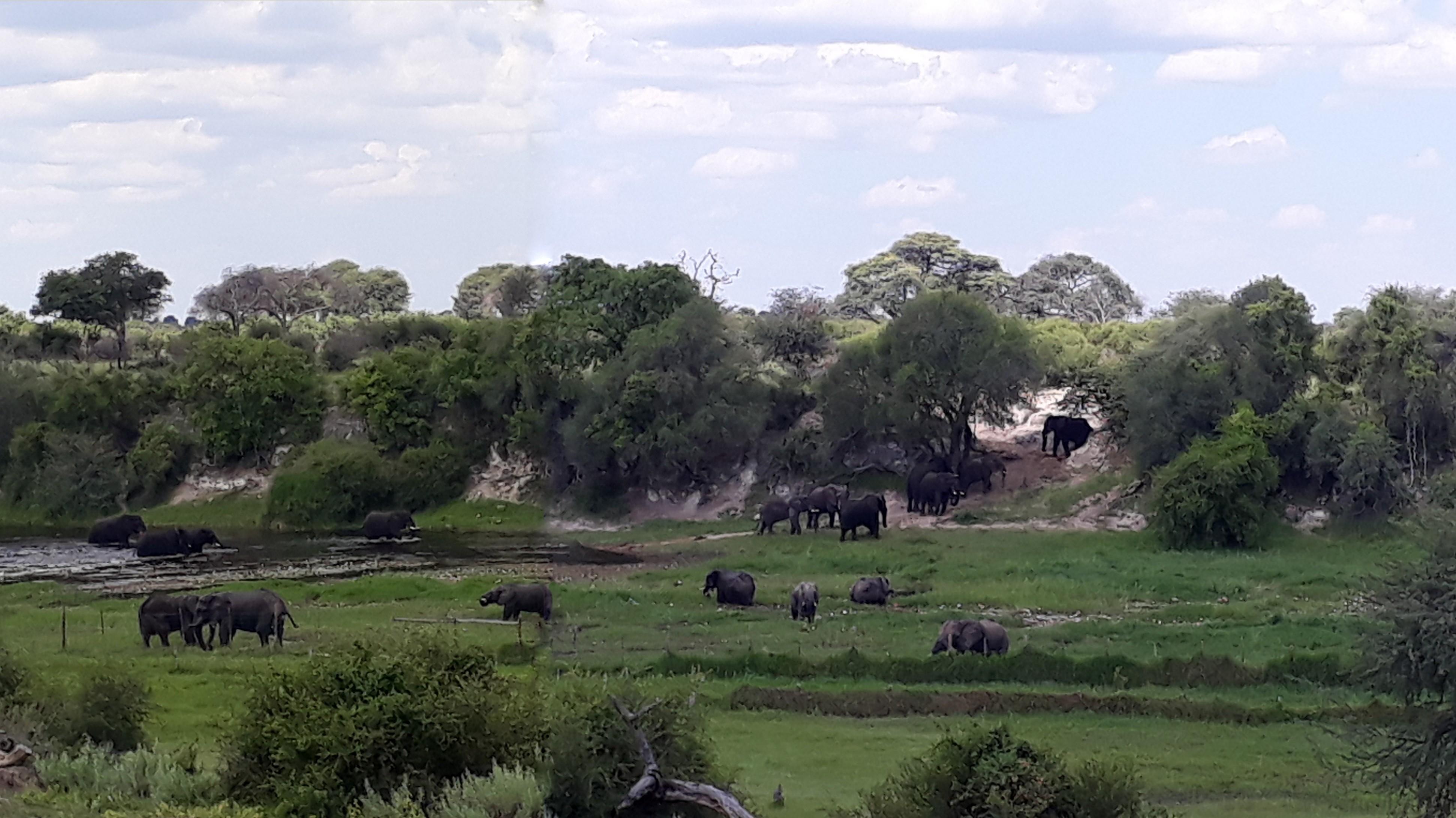 Makgadigadi Pans view from Tiaans.jpg