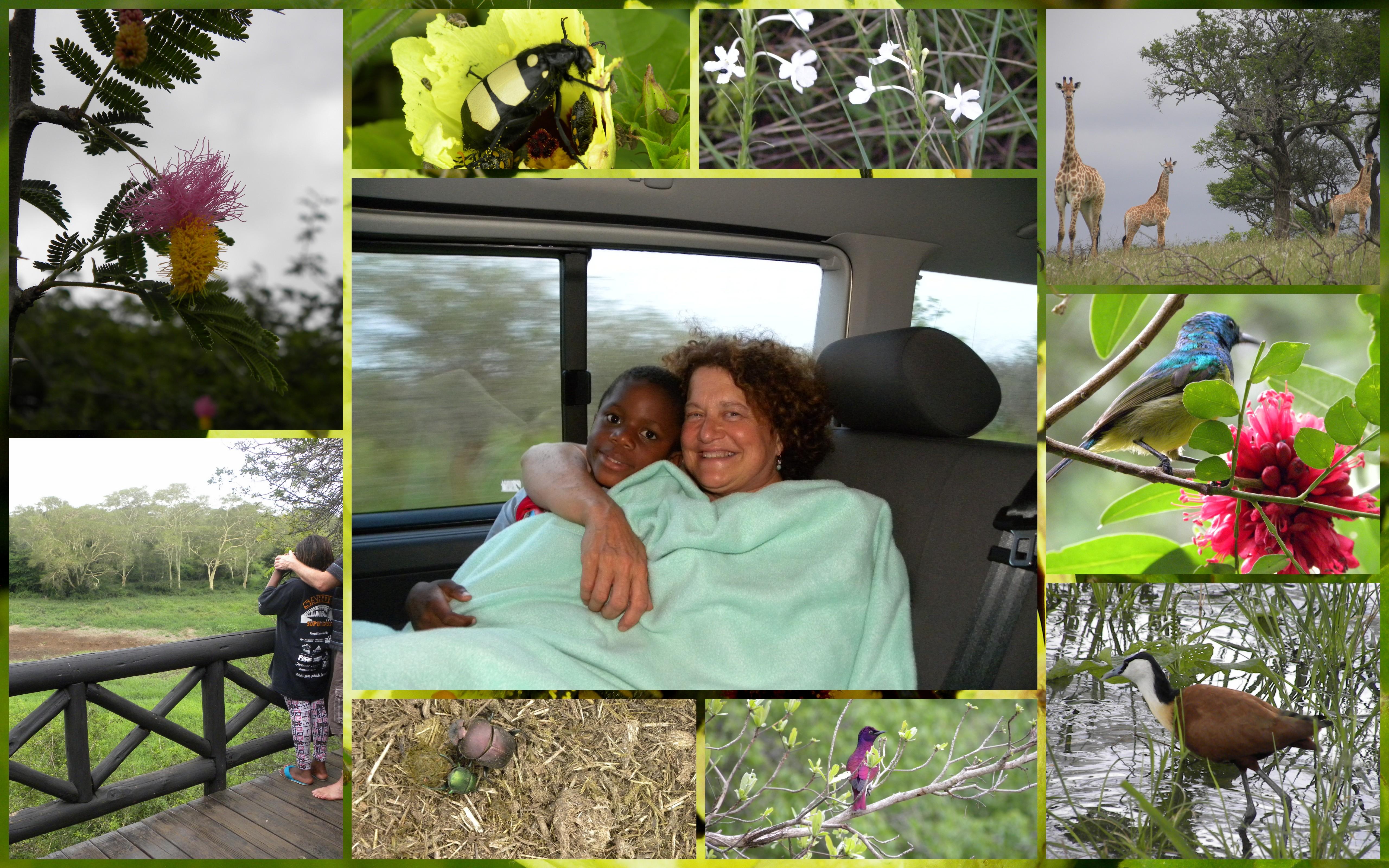 One night in main camp (disorganised KZN Wildlife!), then three in bush camp