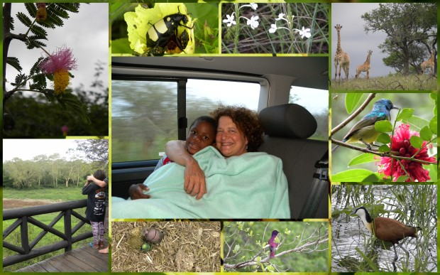 One night in main camp (disorganised KZN Wildlife!), then three in bush camp