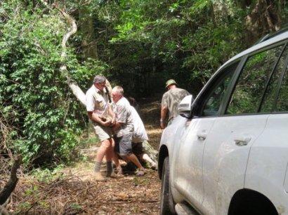 Ngoye Forest (5)