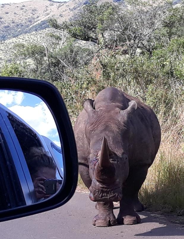 Rhino and Lydia 19May2018